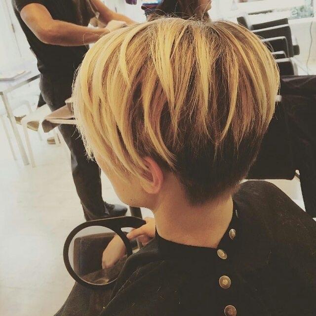 Couleurs ION Cheveux 17