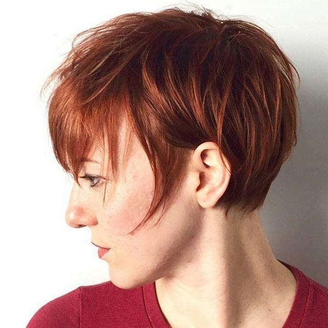 Couleurs ION Cheveux 5