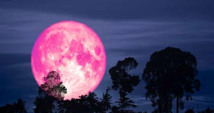 La Pleine Lune Rose Apportera Le Renouveau Dans Votre Vie